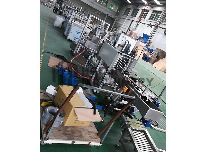 HC-FP Flap Disc Packing Machine (Wrapping and Shrink Machines)